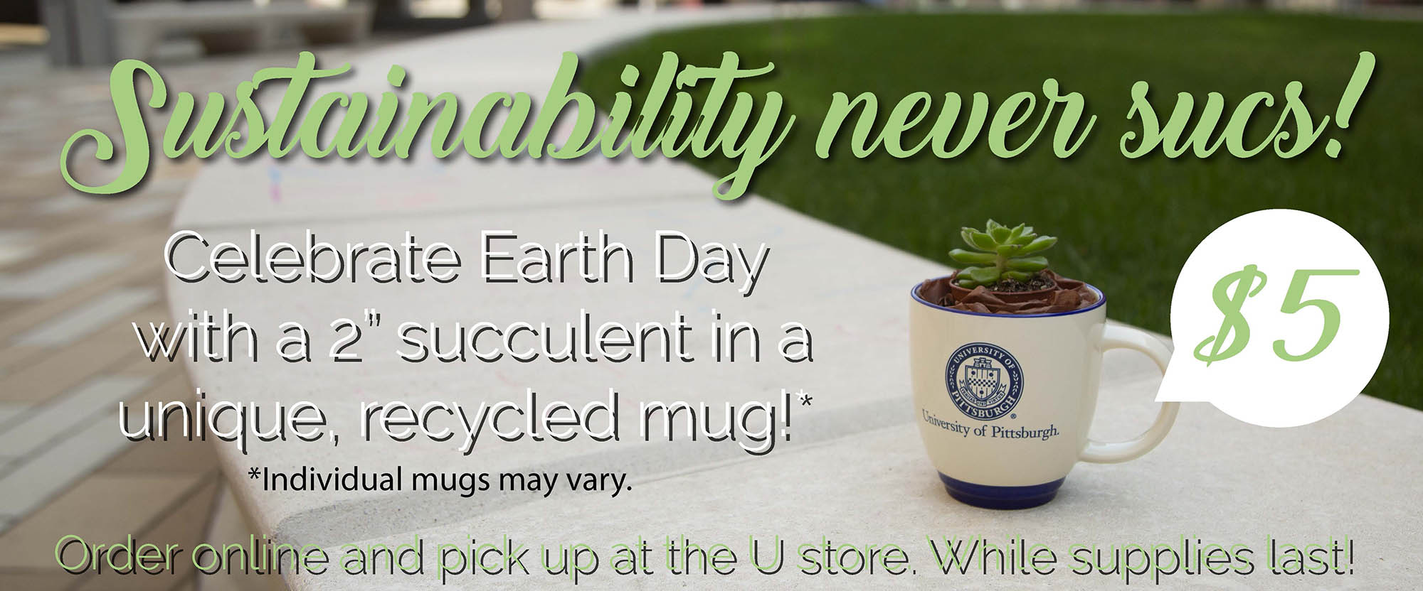 celebrate earth day with a suuculent