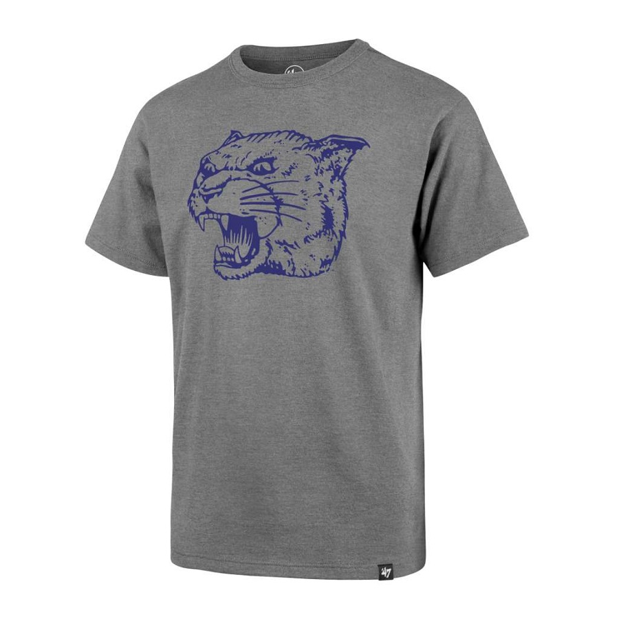 Image For 47 Brand Child's Panther Head Tee