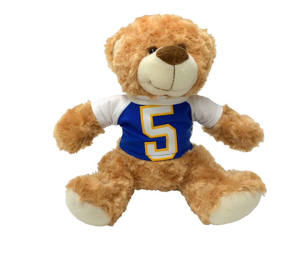 Image For Bear with 100% Recylced Pitt Jersey